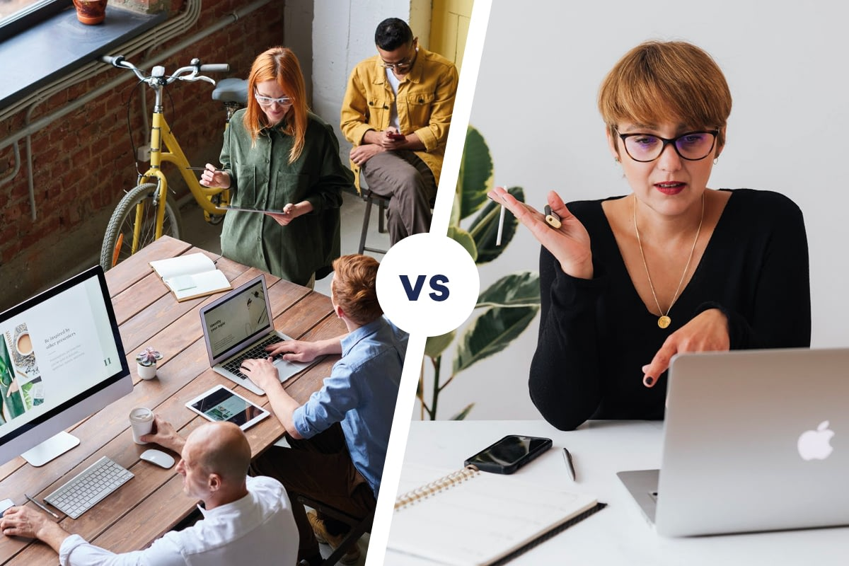 Online Marketingbureau Vs Freelancer